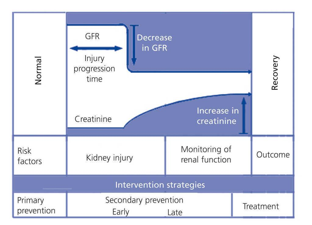 Can acute renal failure be complicated by renal compartment