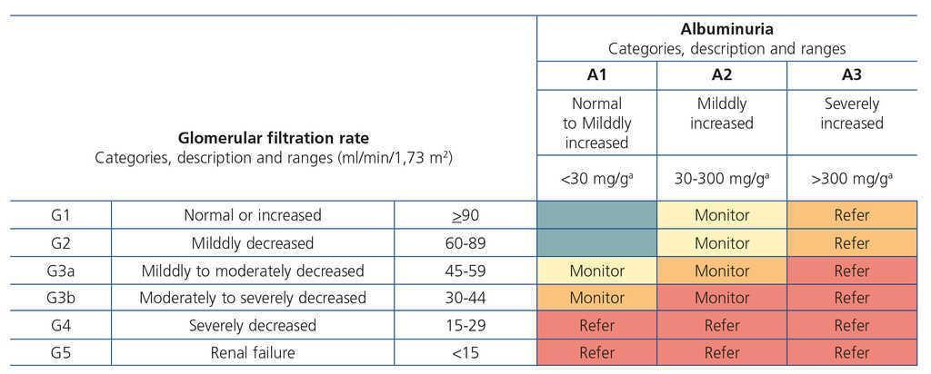 Spanish Society of Nephrology document on KDIGO guidelines