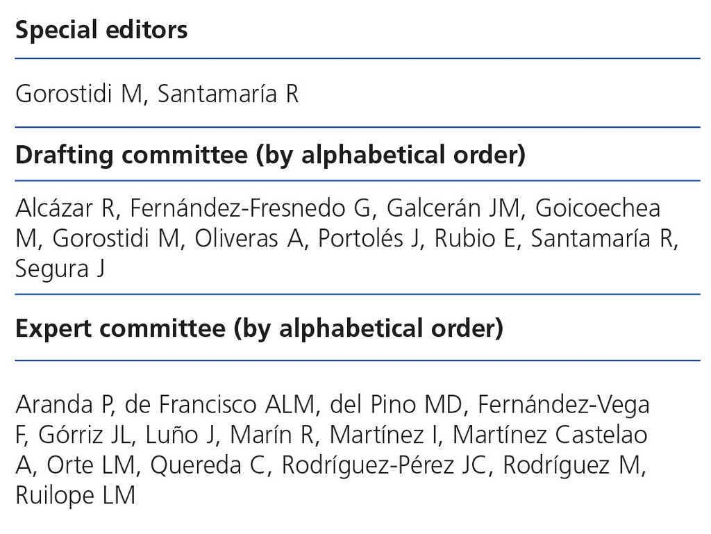 Spanish Society of Nephrology document on KDIGO guidelines
