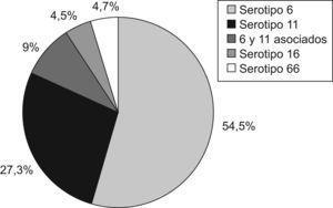 Porcentaje de presentación de los serotipos.