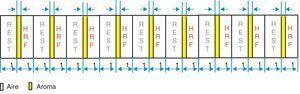 El paradigma utilizado event-related, en el que la duración del bloque de activación y de reposo es de 15s. La duración del estímulo olfativo (butanol, menta o café) es de 2 segundos durante toda la serie que consta de 9 ciclos.