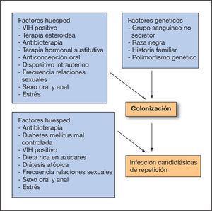 Etiología de las vulvovaginitis candidiásicas de repetición. VIH: virus de la inmunodeficiencia humana.