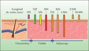 Representación de la relación entre la longitud de onda y su capacidad de penetración en la piel.