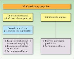 Algoritmo de manejo de los nevus melanocíticos congénitos (NMC) pequeños y medianos. Tomada de Marghoob et al 141.