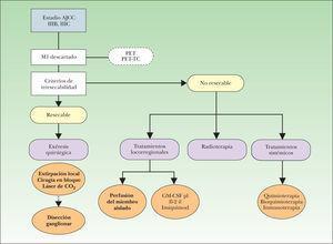 Algoritmo inicial de manejo del paciente con melanoma localmente avanzado. AJCC: American Joint Committee on Cancer; IIIB: metástasis en tránsito y/o satelitosis en ausencia de enfermedad ganglionar; IIIC: metástasis en tránsito y/o satelitosis con enfermedad ganglionar concomitante; GM-CSF pl: tratamiento con factor estimulante de colonias granulocíticas y macrófagos en inyección perilesional; Il-2 il: tratamiento con interleucina-2 en inyección intralesional; M1: TNM correspondiente a la presencia de metástasis a distancia; PET: tomografía por emisión de positrones; PET-TC: tomografía por emisión de positrones combinada con imágenes de tomografía computarizada.