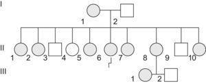 Árbol genealógico de la familia estudiada. La paciente del caso clínico es la II:6.