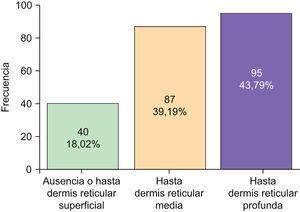 Agrupación de la elastosis solar observada en leve, moderada e intensa.