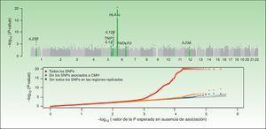 En esta figura se resumen los resultados del GWAS realizado por el CASP. En la figura superior se representan los valores de significación estadística en relación a su posición cromosómica. Este tipo de gráfico se conoce como gráfico «Manhattan», puesto que las regiones de alta significación estadística se asemejan a la vista de una ciudad con rascacielos. En este caso, los estudios de replicación confirmaron la asociación de 7 regiones marcadas en el gráfico de color verde. En el gráfico inferior, conocido como «QQplot», se ordenan los valores de significación (esto es, observed P-value) y se comparan con la distribución teórica en ausencia de asociación (es decir, expected P-value). Este gráfico permite inspeccionar rápidamente la existencia de SNP asociadas a la enfermedad ya que, en ausencia de asociación, los valores deberían situarse sobre la diagonal. En este caso se puede observar cómo el QQplot que incluye las SNP de la región HLA (rojo) se desvía claramente. Al excluir esta región (naranja) y las otras regiones asociadas (azul) se puede ver cómo el gráfico se aproxima al valor esperado (zona sombreada). En ambos gráficos la significación para la región HLA-C se ha truncado para facilitar la interpretación de los resultados. Fuente: Elder et al.26; Nair et al28. GWAS: Genomewide Association Studies; CASP: Collaborative Association Study of Psoriasis.