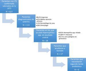 agente causal uretritis no gonococica