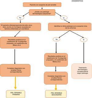 Algoritmo de diagnóstico del síndrome de piel sensible.