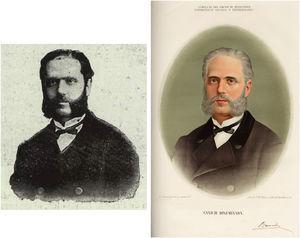 Imágenes utilizadas para el estudio.