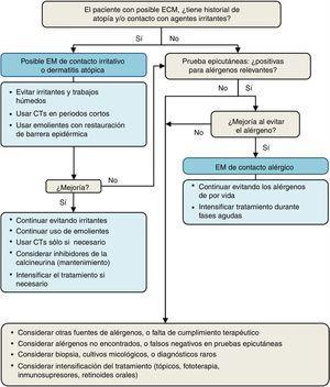 Diagnóstico etiológico del eccema de manos (EM).