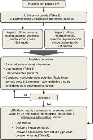 Manejo del eccema de manos (EM) por el médico de atención primaria.