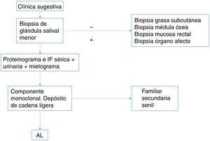 Algoritmo diagnóstico de amiloidosis.