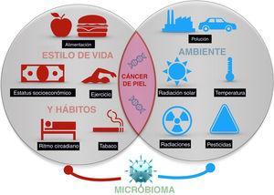 Exposiciones ambientales de un ser humano a lo largo de la vida, hábitos y estilo de vida que influyen en laaparición de cáncer de piel.