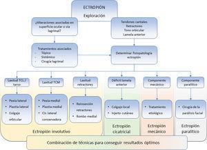 Algoritmo de exploración y tratamiento del ectropión palpebral. Es importante realizar una exploración completa para adecuar los tratamientos necesarios, esto permite obtener los mejores resultados y disminuir las recidivas. TCL: tendón cantal lateral. TCM: tendón cantal medial.