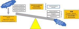 Hipótesis fisiopatológica del espectro de manifestaciones cutáneas durante la infección por SARS-CoV-2. IFN: interferón; IL: interleucina; SAM: síndrome de activación macrofágica; TNFα: factor de necrosis tumoral alfa.