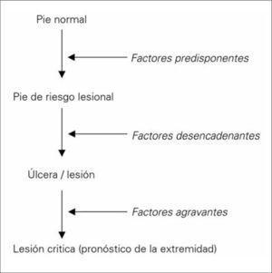 Fisiopatología de la úlcera del pie diabético.