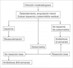 Conducta terapéutica en las infecciones moderadas-graves.
