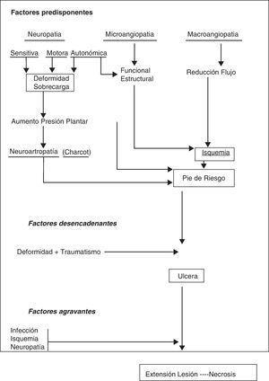 Mecanismo de producción de la úlcera del pie diabético.