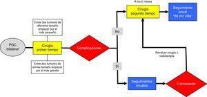 Propuesta de algoritmo quirúrgico en el manejo de los paragangliomas carotídeos bilaterales.