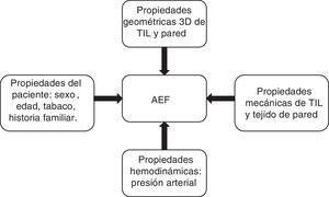 Variables que valorar para realizar el análisis de elementos finitos (AEF).