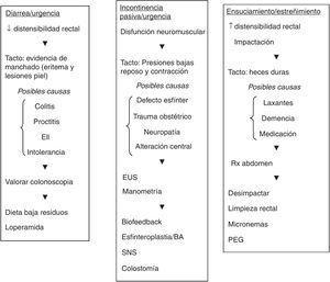 Algoritmo diagnóstico-terapéutico en distintos escenarios clínicos. BA: agentes aumentadores de volumen&#59; EUS: ecografía endoanal&#59; PEG: polietilenglicol&#59; SNS: neuromodulación de raíces sacras. Adaptada de Shah et al.27, con autorización.