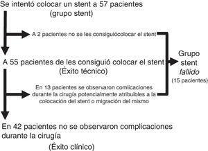 Resultados de los intentos de colocación de los stents y subgrupos.