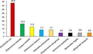 Etiología de las infecciones de localización quirúrgica (%). N = 19.