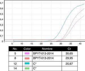 Reacción en cadena de la polimerasa en tiempo real para la certificación molecular de piel y tejidos.
