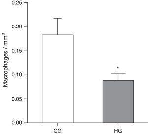 Mean number of alveolar macrophages per microscopic field in the lung parenchyma in neonatal mice exposed to ambient air and hyperoxia for 24h. CG=control group, animals exposed to ambient air; HG=hyperoxia group, animals exposed to 100% oxygen for 24hours. * Means difference between the CG and HG, with a p-value=0.0475 in the unpaired Student's t-test.