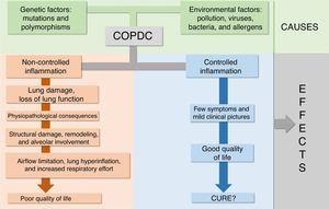 Interactions of causes, effects, and clinical outcomes of chronic obstructive pulmonary disease in children (COPDC).