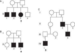 Pedigrees of the three familial cases (A–C) with the same type of Arthrogryposis multiplex congenital. Arrows indicate the affected patients. Squares represent males and circles, females; filled squares/circles represent affected individuals.