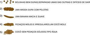 Final version of the Brazilian Portuguese mBSFS-C.