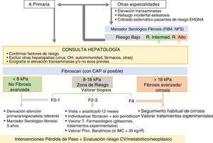 Algoritmo para la detección y evaluación de EHGNA en atención hospitalaria. CV: cardiovascular; FIB-4: Fibrosis 4 score; IMC: índice de masa corporal; NFS: NAFLD fibrosis score.