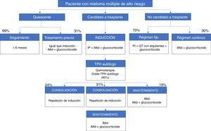 Esquemas de tratamientos autorizados en España para pacientes con nuevo diagnóstico de mieloma múltiple de alto riesgo. Están basadas en las opciones terapéuticas disponibles entre mayo y agosto de 2017. iMid: agentes inmunomoduladores; IP: inhibidor del proteasoma; QT: quimioterapia; TPH: trasplante de progenitores hematopoyéticos.