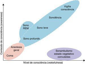 Componentes da consciência: nível e conteúdo de consciência.