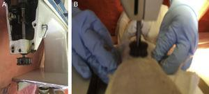 (A) Chest compression device. (B) Animal positioned under the device.