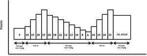 Esquema de maniobra de reclutamiento alveolar realizada en la fase 4 tras provocar el distrés respiratorio agudo en el animal. PCV (ventilación controlada por presión), OL-PEEP (Open lung PEEP). Figura adaptada de Ferrando C, Soro M, Unzueta C, et al. Rationale and study design for an individualised perioperative open-lung ventilatory strategy with a high versus conventional inspiratory oxygen fraction (iPROVE-O2) and its effects on surgical site infection: study protocol for a randomised controlled trial. BMJ Open 2017 Jul 31;7(7):e016765. doi: 10.1136/bmjopen-2017-016765.