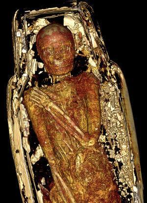 Reconstrucción tridimensional, vista coronal, de la momia femenina dentro de su ataúd: se evidencia la posición de los brazos y los restos de cartonaje.
