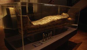 Sarcófago de Tadimentet, junto con cuatro figuras funerarias (Museo de Ciencias Naturales de la Ciudad de la Plata).