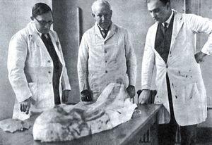 Smith, junto a Harris y Dawson, examinan un cartonaje de momia egipcia en el University College en 1930.