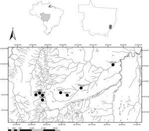 Butterfly sampling sites at the Pindaíba River Basin, MT – Brazil; (CVS_1, CVS_2, CVS_3, CVS_4=Caveira stream (1st to 4th order); MS_1, MS_2, MS_3 and MS_4=Mata Stream (1st to 4th order).