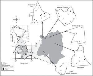 Localization of the study areas in the Atlantic Forest biome, São Paulo state – Brazil.