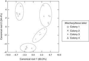 Scatter diagram of the discriminant analysis results, showing the two canonical roots for differentiation of 4 colonies of Mischocyttarus latior, based on the relative areas (percentages) of the cuticular compounds of females, obtained by GC–MS.
