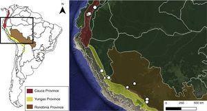 Geographic distribution of Drepanocnemis species on Pacific dominion and South Brazilian dominion (Morrone, 2014). Symbols: triangle (D. dorae)&#59; circle (D. hirticeps)&#59; square (D. griseovirens)&#59; star (D. aurifronssp. nov.)&#59; hexagon (Drepanocnemis sp.).