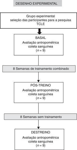 Fluxograma das atividades desenvolvidas durante a pesquisa experimental.