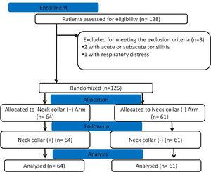 CONSORT flow diagram demonstrating patient allocation.