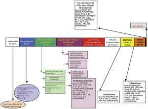 Esquema del procedimiento experimental. Fuente: autores.