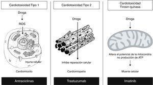 Mecanismos relacionados con los tipos de antineoplásicos. Reproducida y modificada con permiso del autor21. EGF: factor de crecimiento epidérmico. VEGF: factor de crecimiento vascular endotelial.